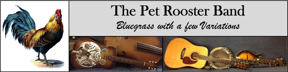 pet rooster - bluegrass band
